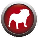 BullGuard Spamfilter icon