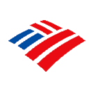 Bank Of America Icon Installer icon