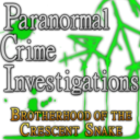 Paranormal Crime Investigations: Brotherhood of the Crescent Snake Collector's Edition icon