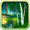 Summer Forest 3D Screensaver and Animated Wallpaper icon