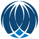 Brain Explorer icon