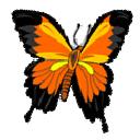 Pixpedia Publisher icon