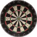 Darts 13 icon