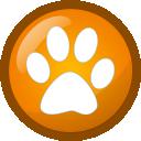 Picmeta PhotoTracker icon