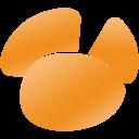 Navicat for SQL Server icon
