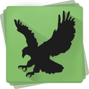 Black Bird Cleaner icon