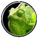 NumericalChameleon icon