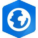 ArcGIS icon