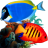 Tropical Fish 3D Screensaver icon