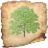 TreeDraw icon
