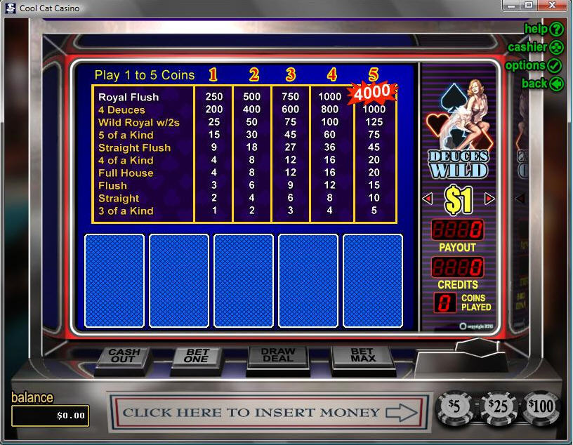 Cool Cat Casino Download Games Software